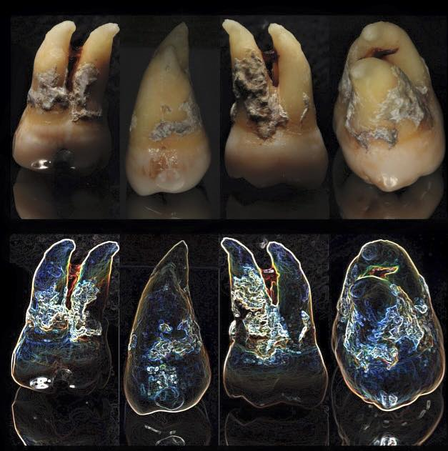 sarro.dental